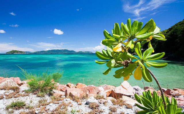 сейшельские острова отзывы