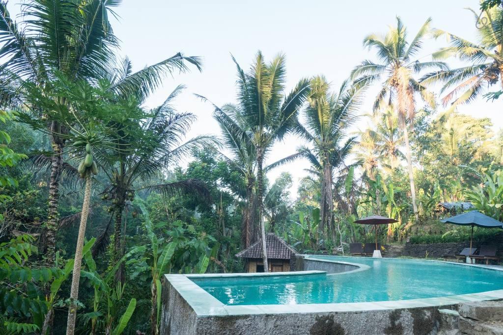 Где недорого остановиться на Бали