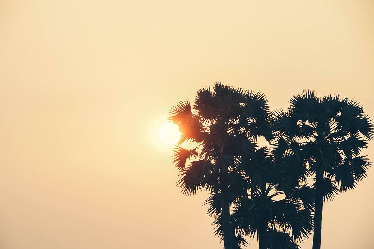 Сезон отдыха в Камбодже
