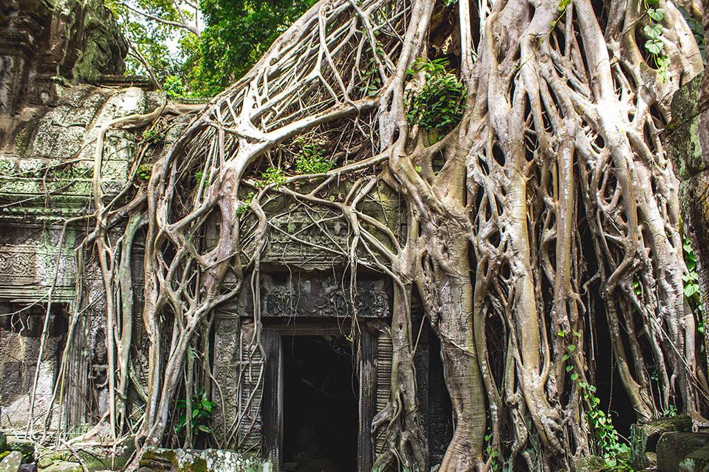 Отзывы туристов об отдыхе в Камбодже