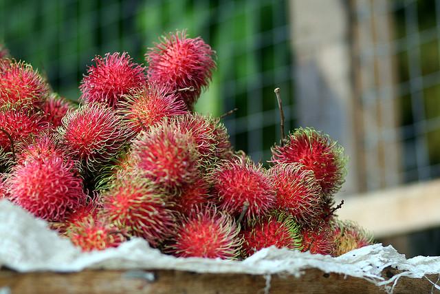 экзотические фрукты фото