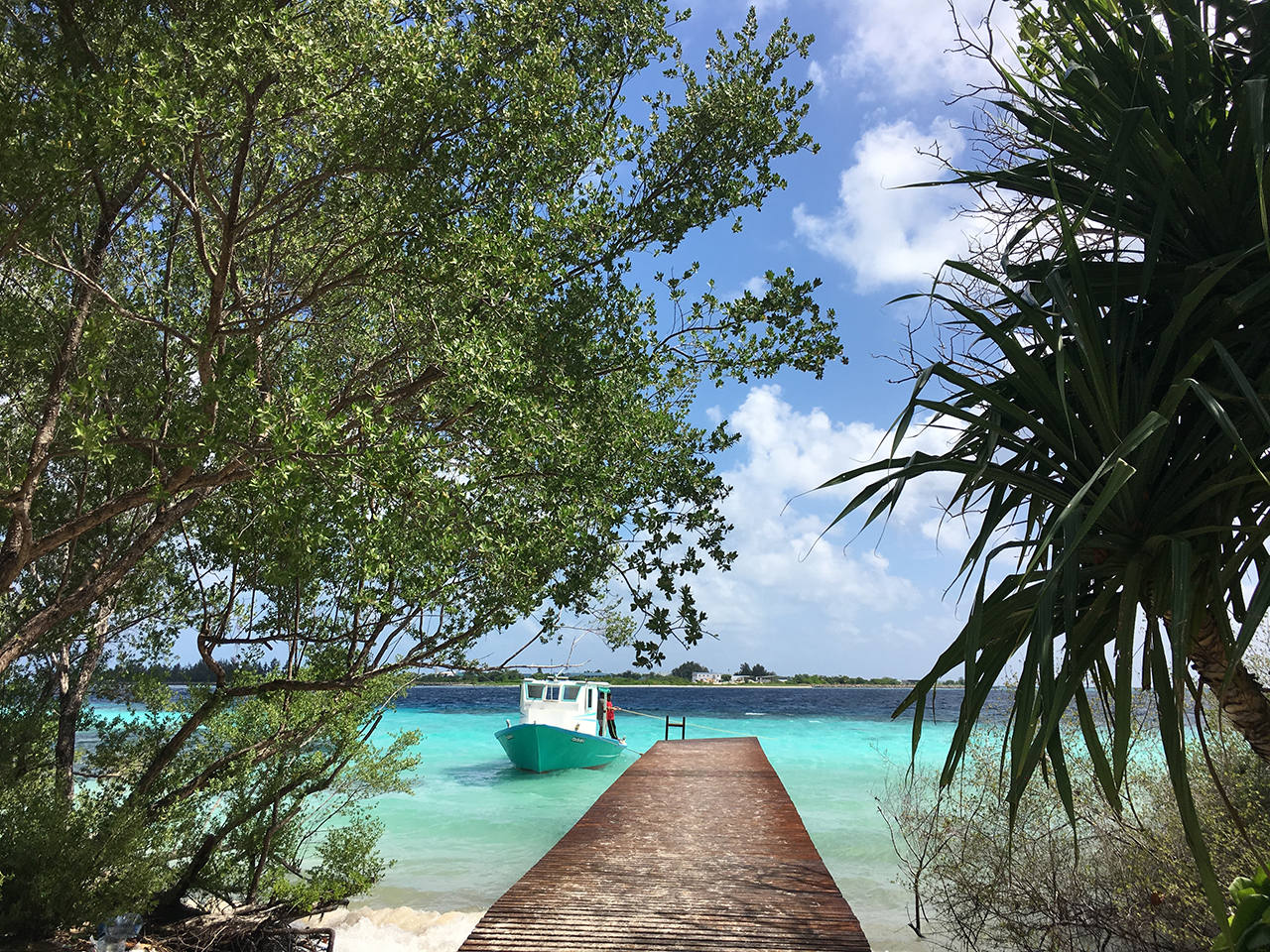 Отзывы об отдыхе на Мальдива