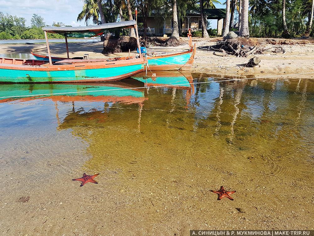 пляж с морскими звездами на острове фукуок во вьетнаме