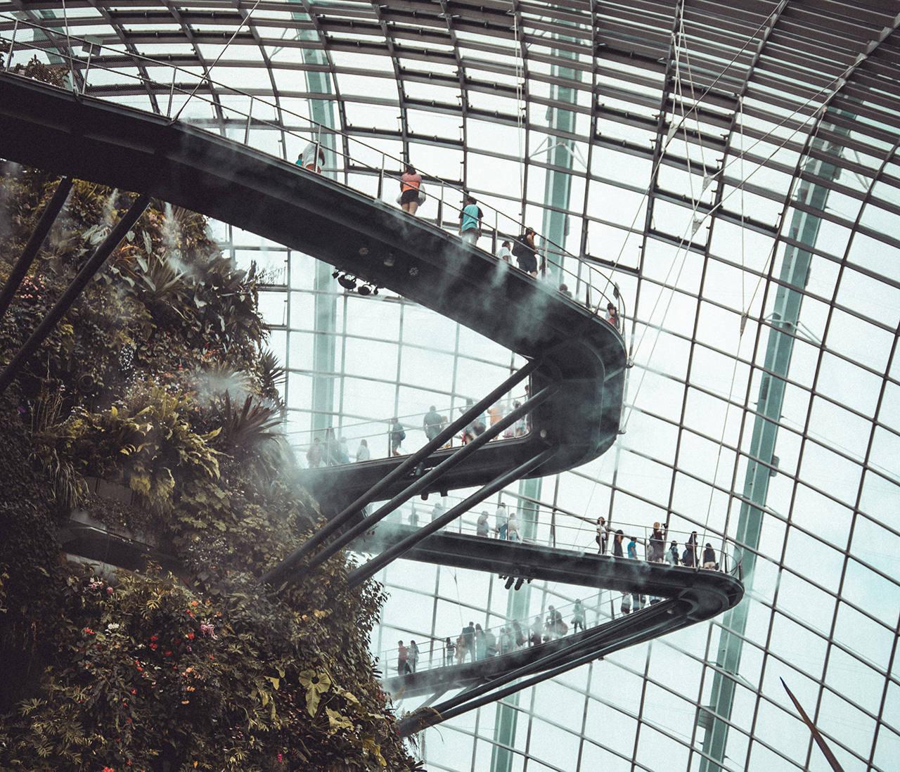 Сколько стоят экскурсии в Сингапуре