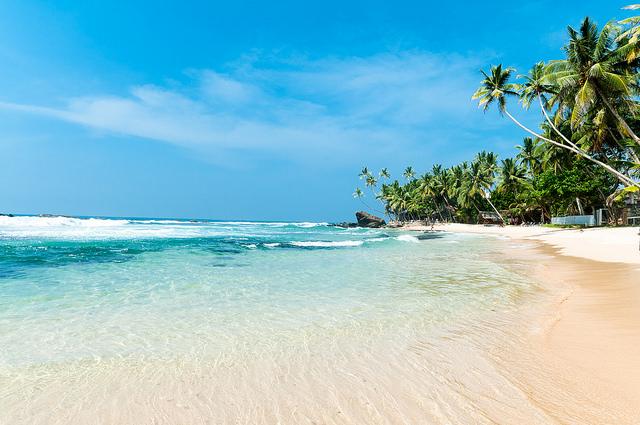 шри ланка пляжи отзывы фото