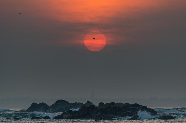 шри ланка погода отзывы фото