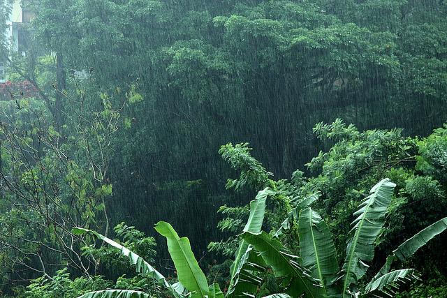 Где в Азии зимой сезон дождей