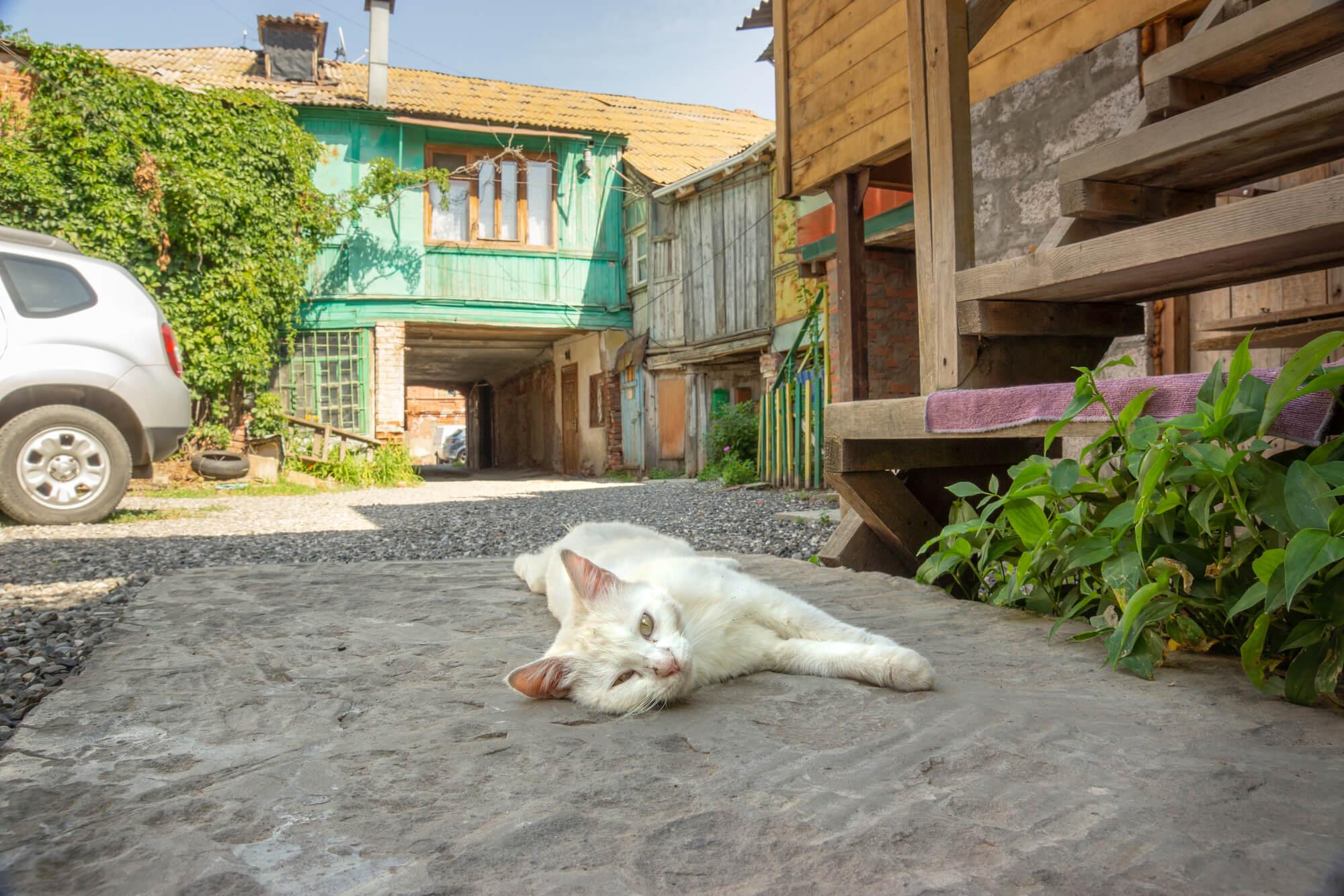 Где отдыхать на Каспийском море в России