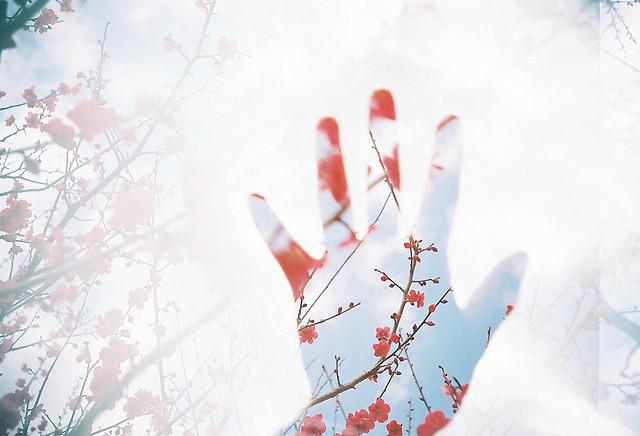 акици и спецпредложения в японию из москвы