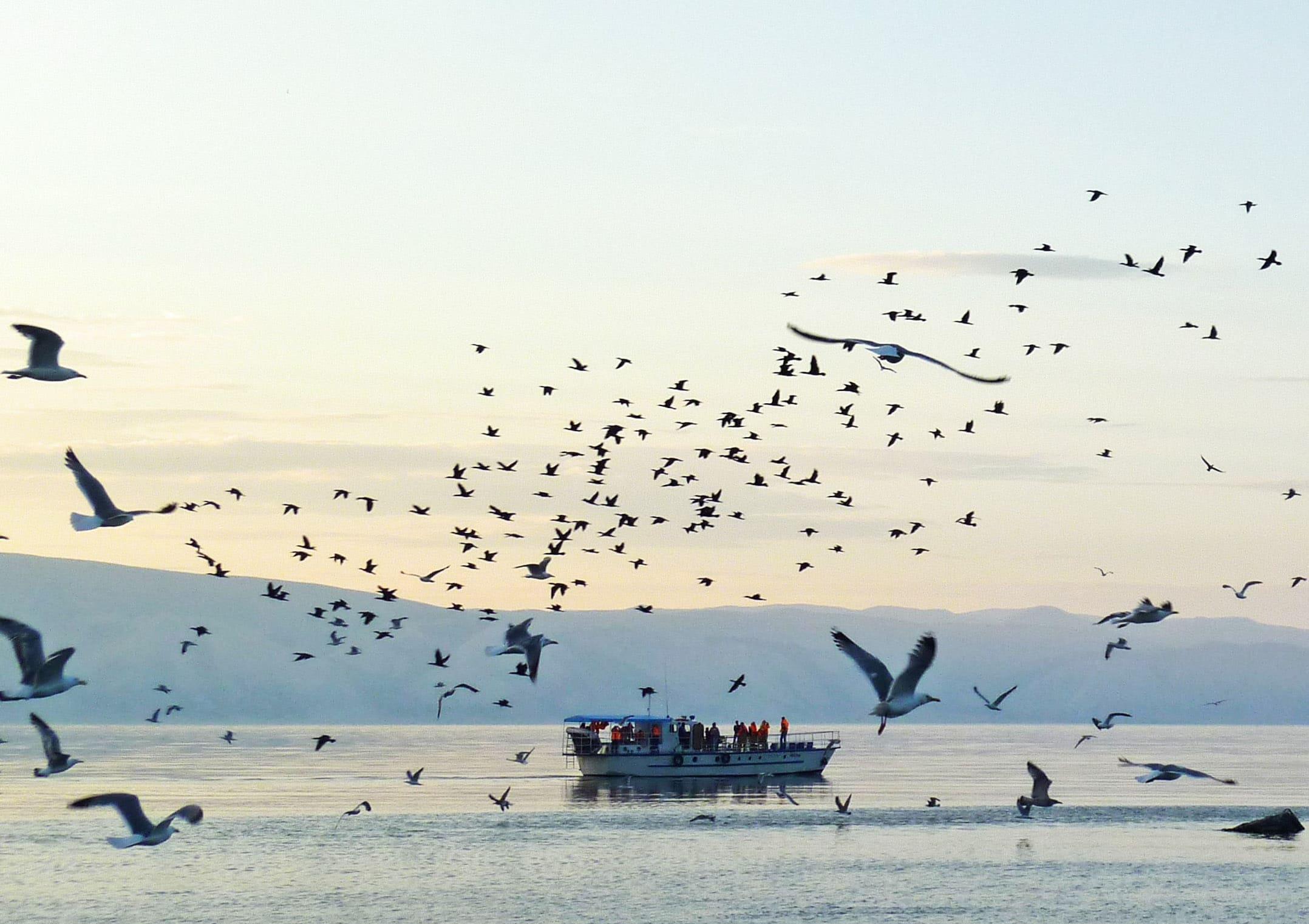 Где отдохнуть на Байкале недорого