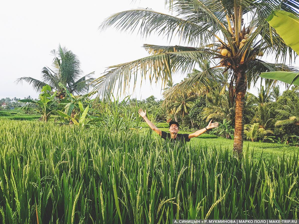 Отдых на острове Бали Когда лучше всего взять тур на Бали Сезон отдыха на Бали