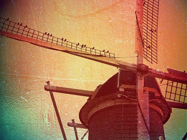 Ветряная мельница. В Нидерланды самостоятельно. MAKE-TRIP.RU