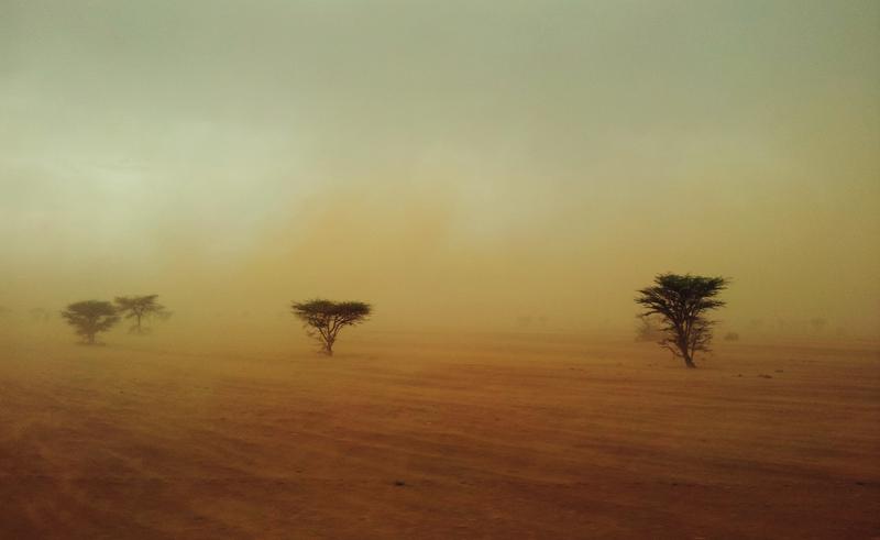 Песчаная буря. Пустыня в Марокко
