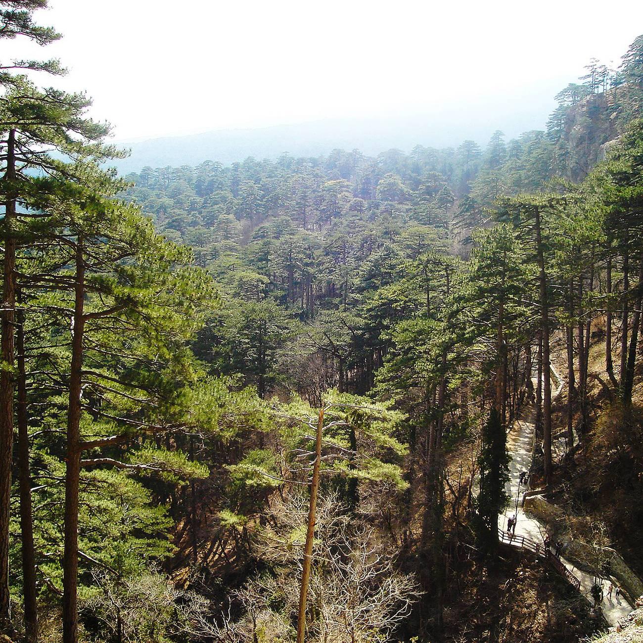 Водопад Учан-Су в Крыму