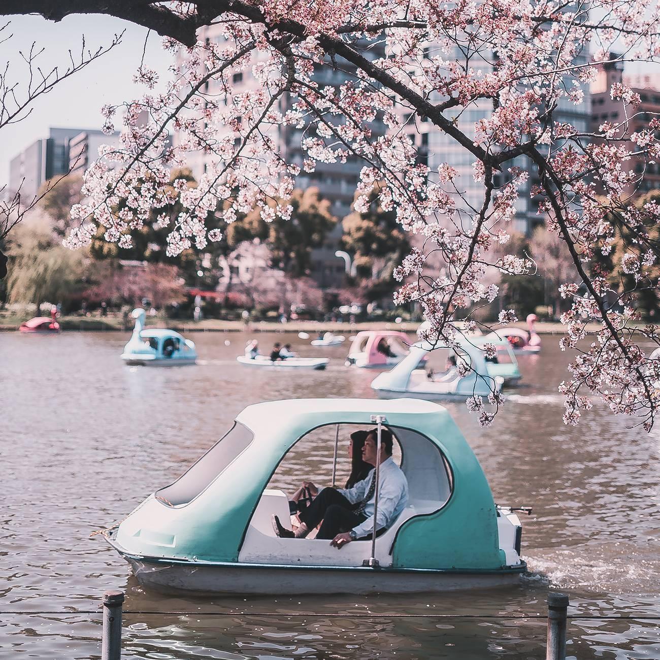 Фото и описание достопримечательностей Токио