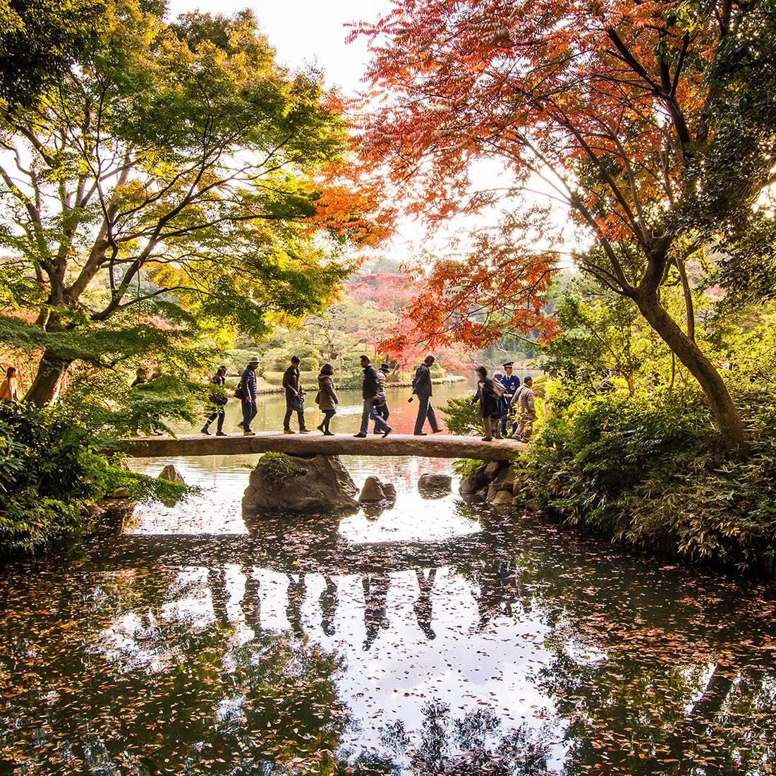 Сады и парки в Токио