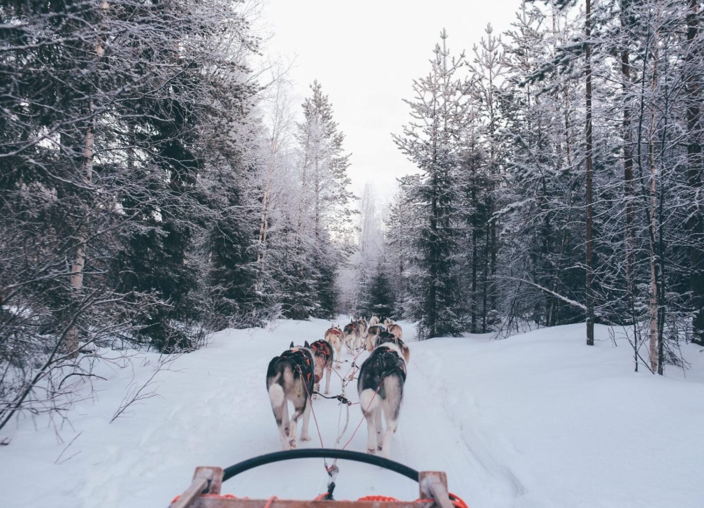 Где можно отдохнуть в Карелии зимой