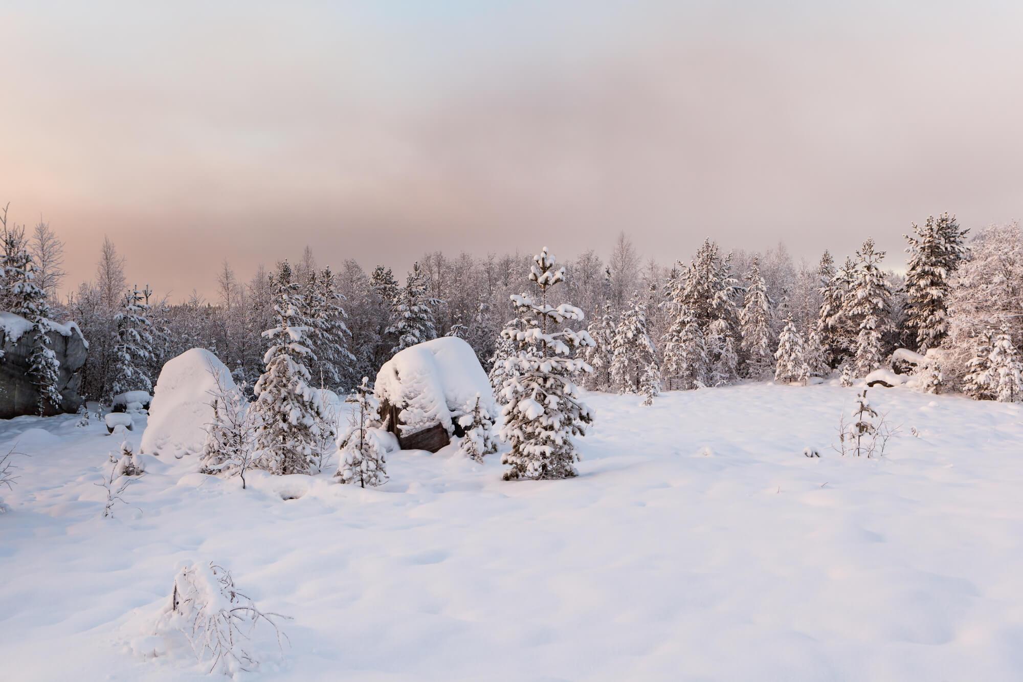 Погода в Карелии в Новый год