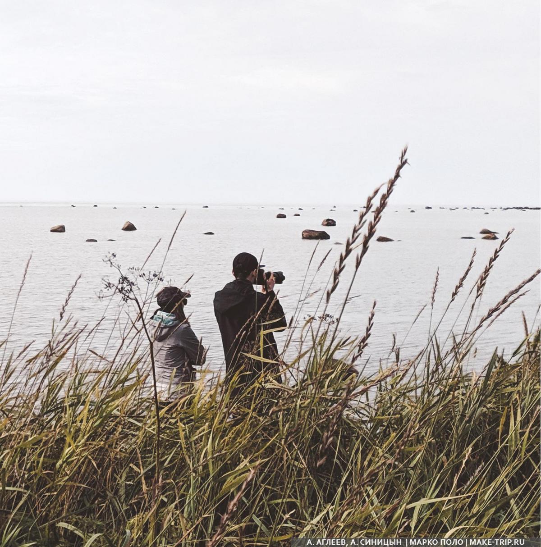 Белое море, Кольский