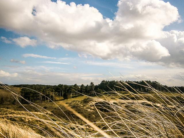 пейзажи нидерландов - зёйд-кеннемерланд