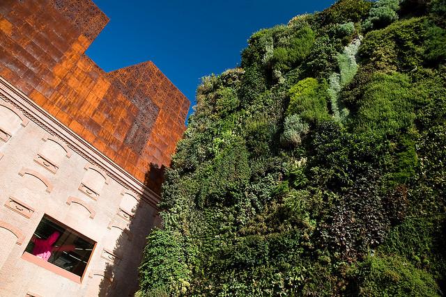 замечательный музей в Мадриде - Caixaforum