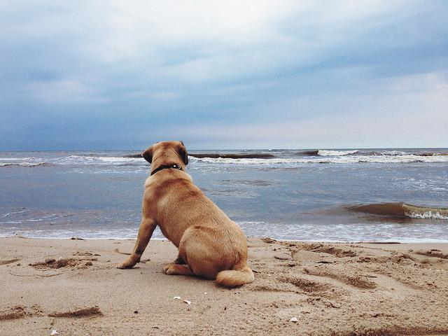где лучше отдыхать весной на море