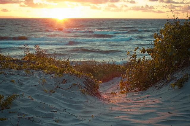Песчаные пляжи Балтийского моря