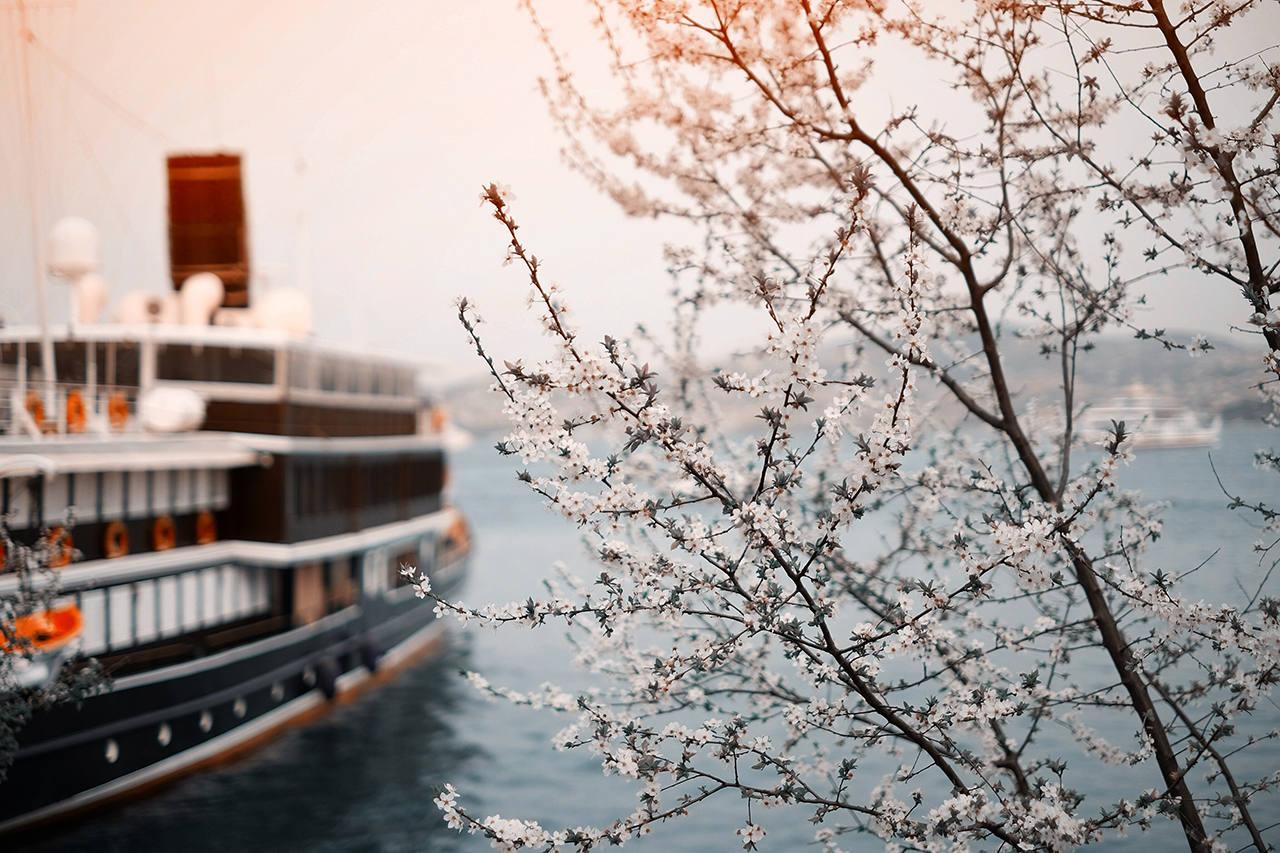 Куда недорого слетать на море в апреле