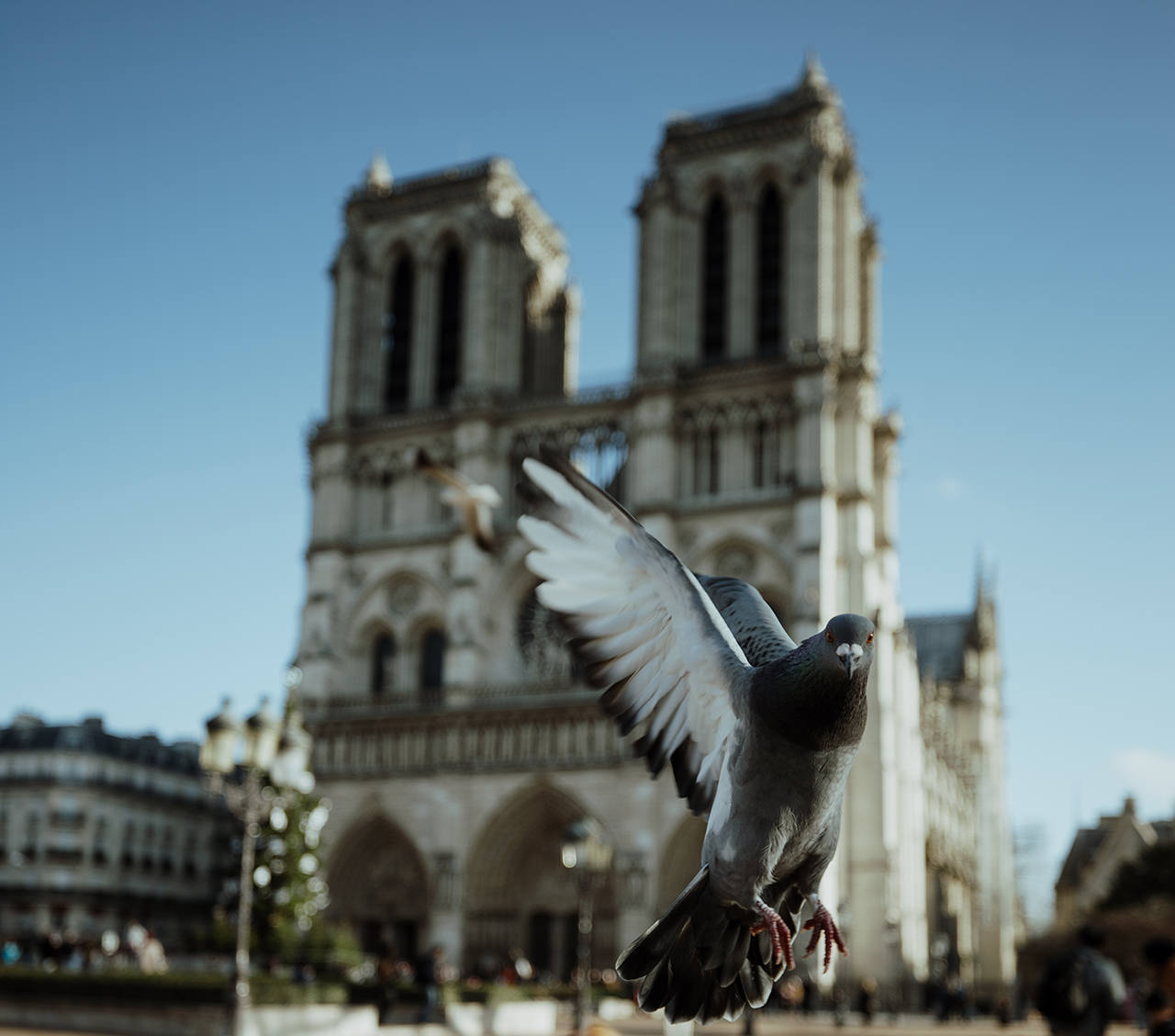 Что интересного посмотреть в Париже