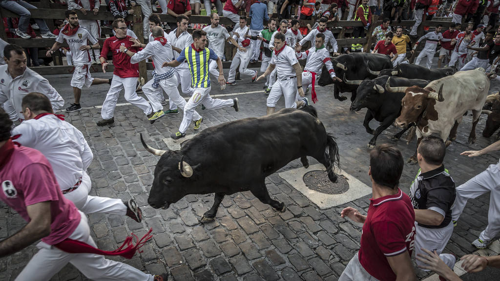 Где посмотреть корриду в Испании