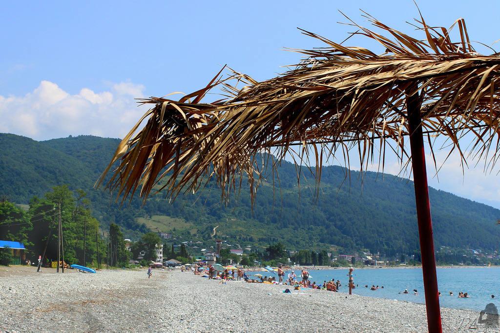 Когда сезон в Абхазии?
