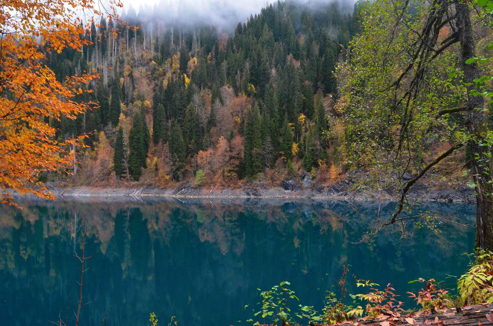 Где лучше отдохнуть в Абхазии? Читать отзывы