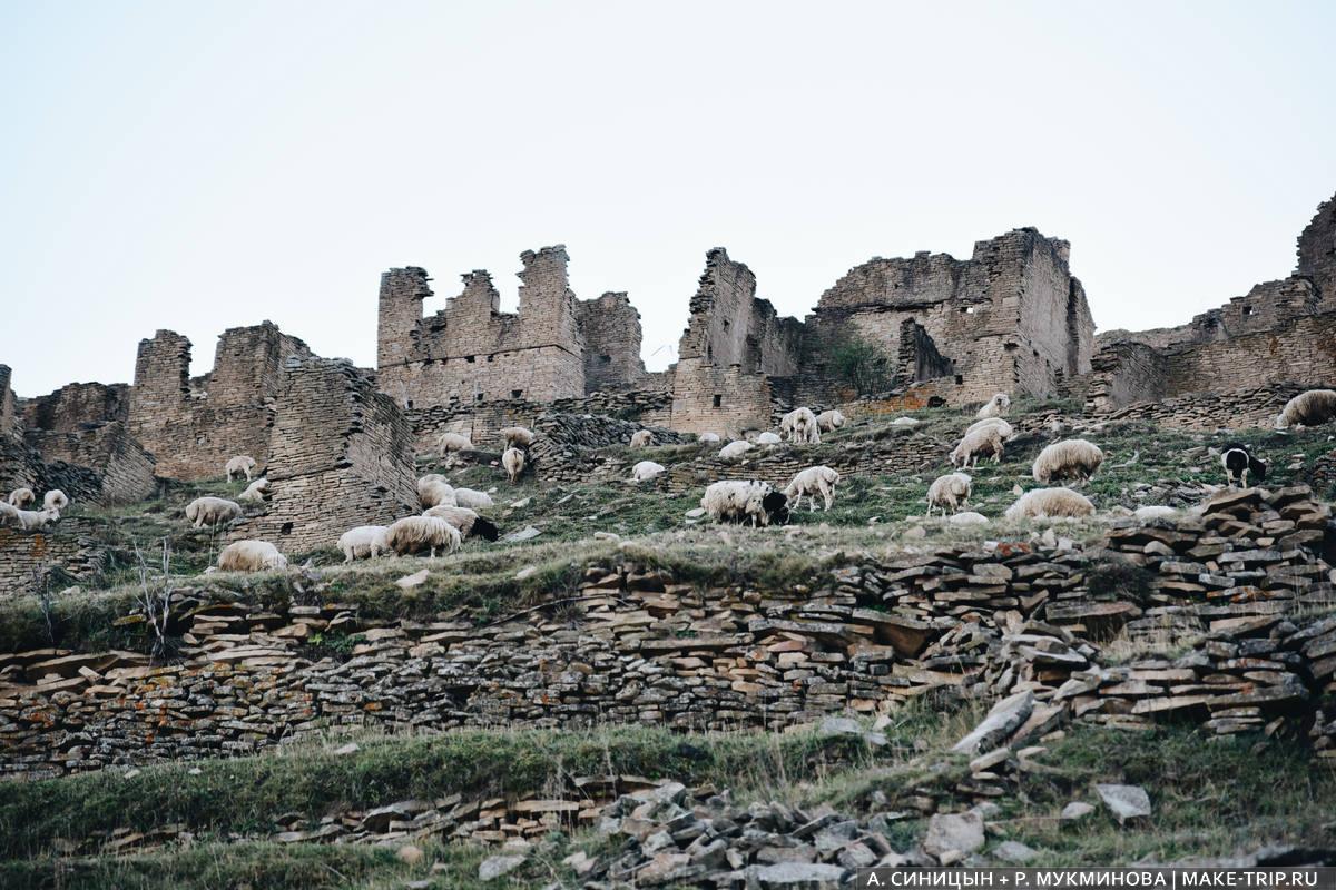 Достопримечательности Дагестана фото и описание