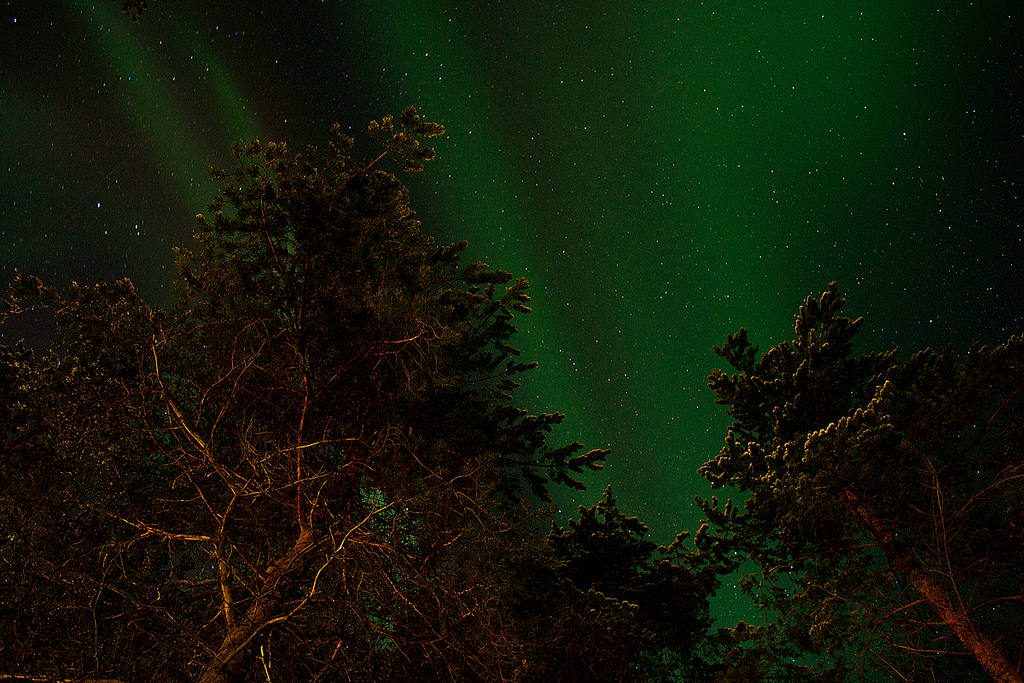 Где посмотреть северное сияние в Карелии