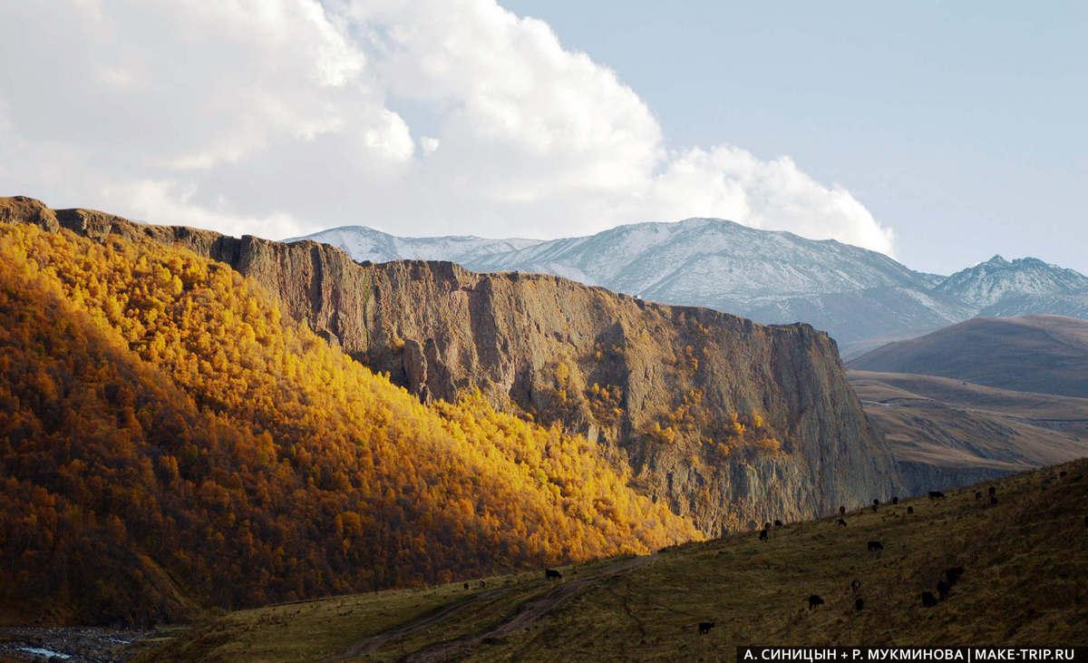 путешествия по Кавказу