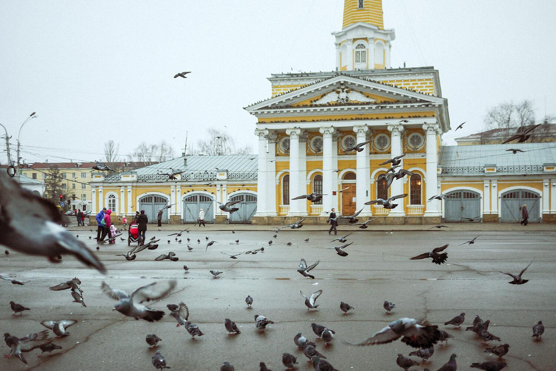 Что посмотреть в Костроме самостоятельно