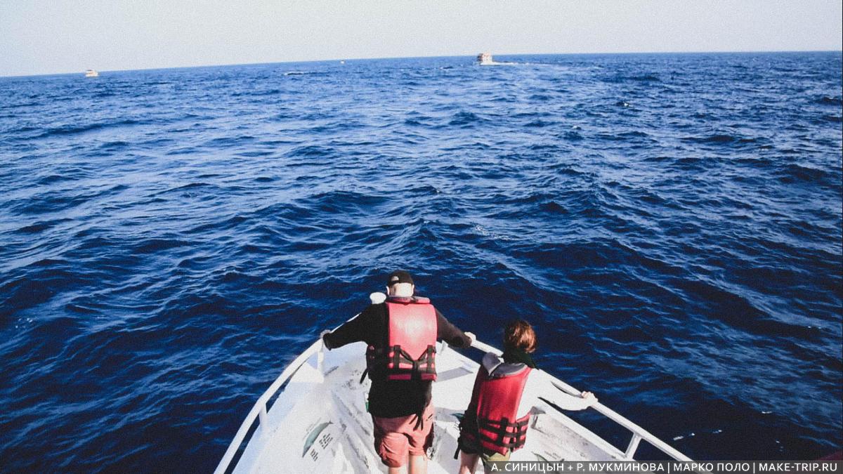 шри-ланка киты экскурсия отзывы