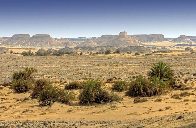 как съездить в египет самостоятельно