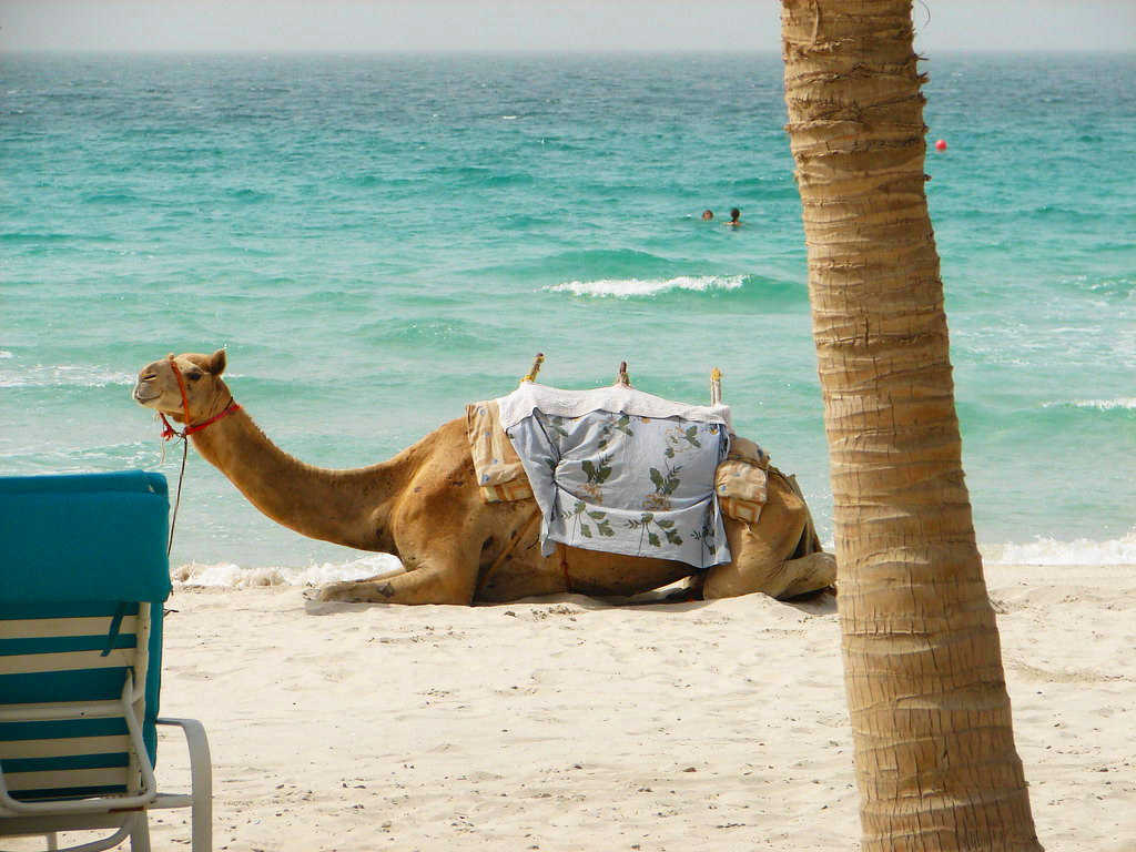 Недорогие курорты в Эмиратах