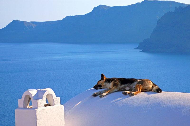 Отдых у моря летом 2018 года в Греции