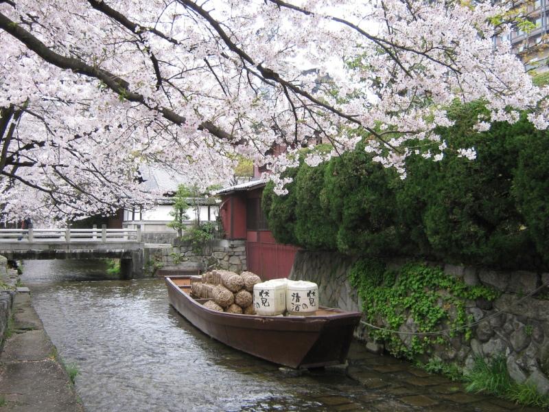 как спланировать самостоятельное путешествие в японию
